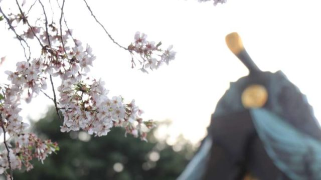 寺社の手前に桜