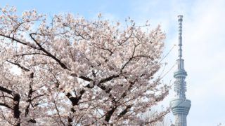 桜の木の奥に見えるスカイツリー