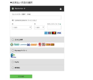 支払い情報画面