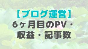 ブログ運営6ヶ月目のPV・収益・記事数